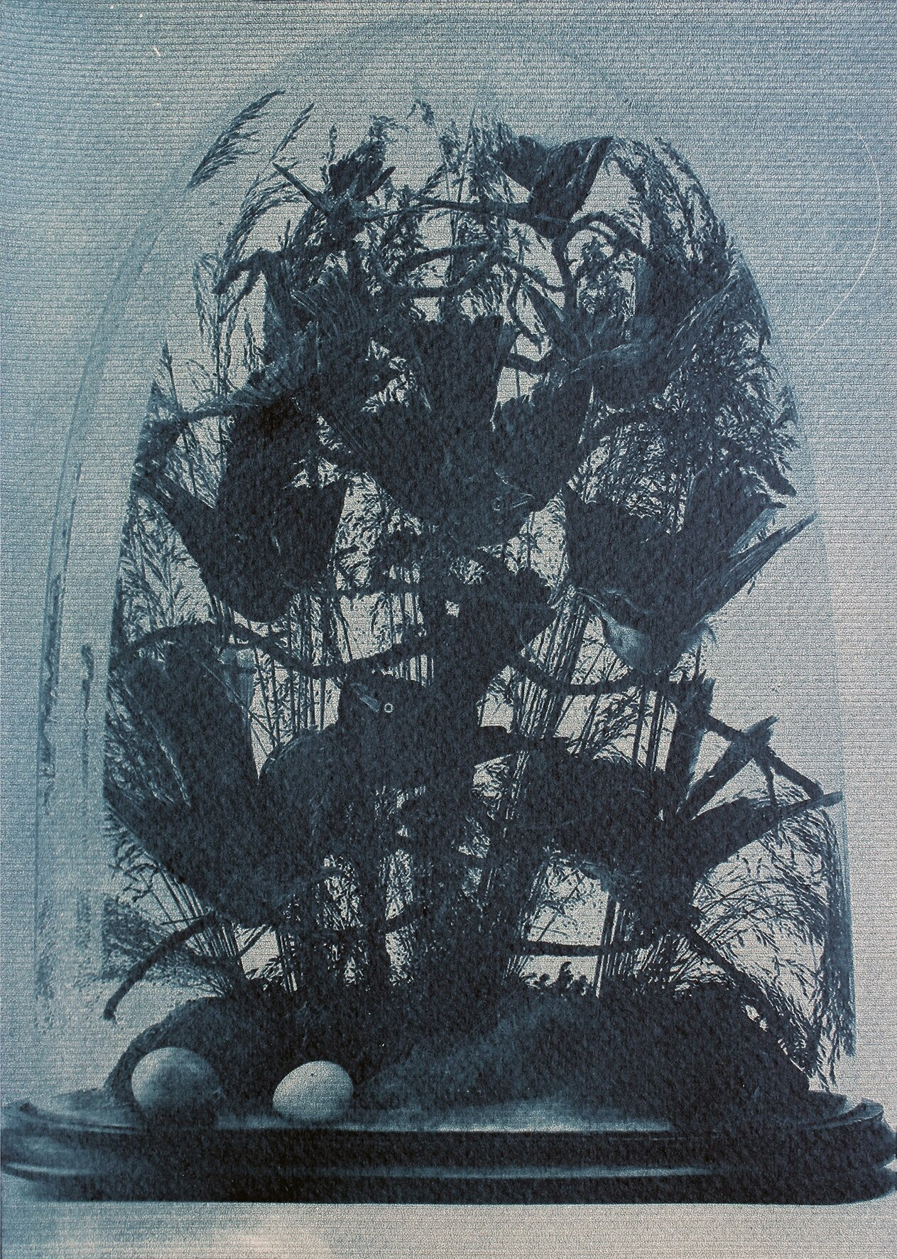 The Hall of Lost Steps ( 1 ),  cyanotype, 29 x 20 cm, 2020