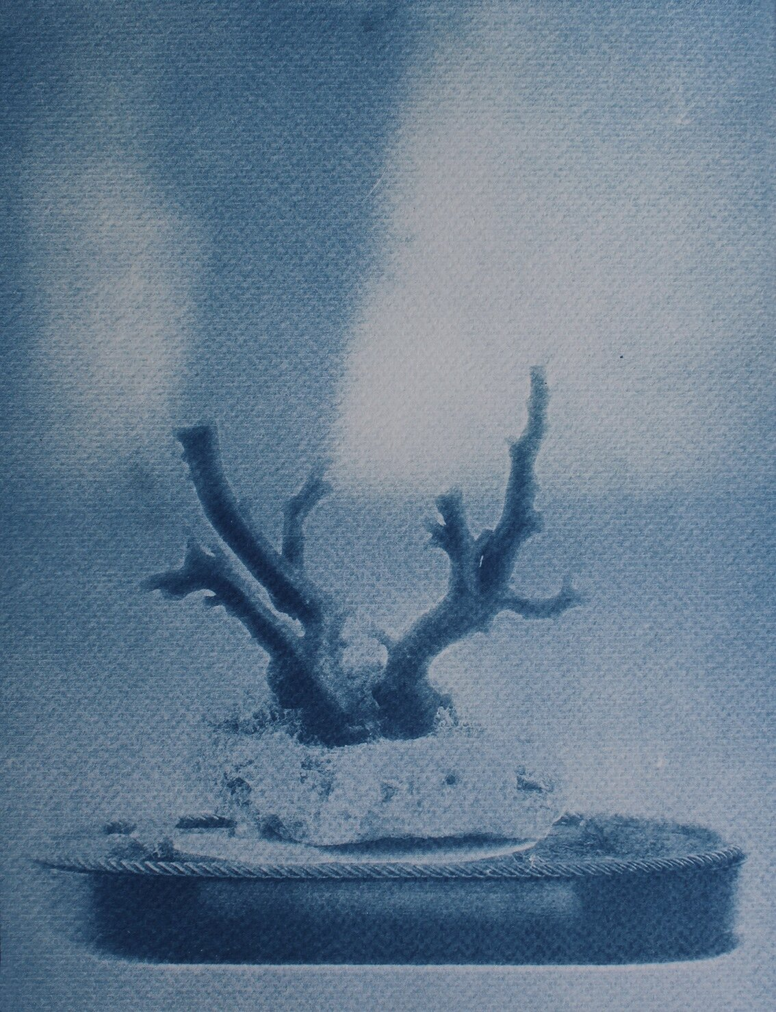 The Hall of Lost Steps ( 2 ) cyanotype, 26,5 x 20 cm, 2020