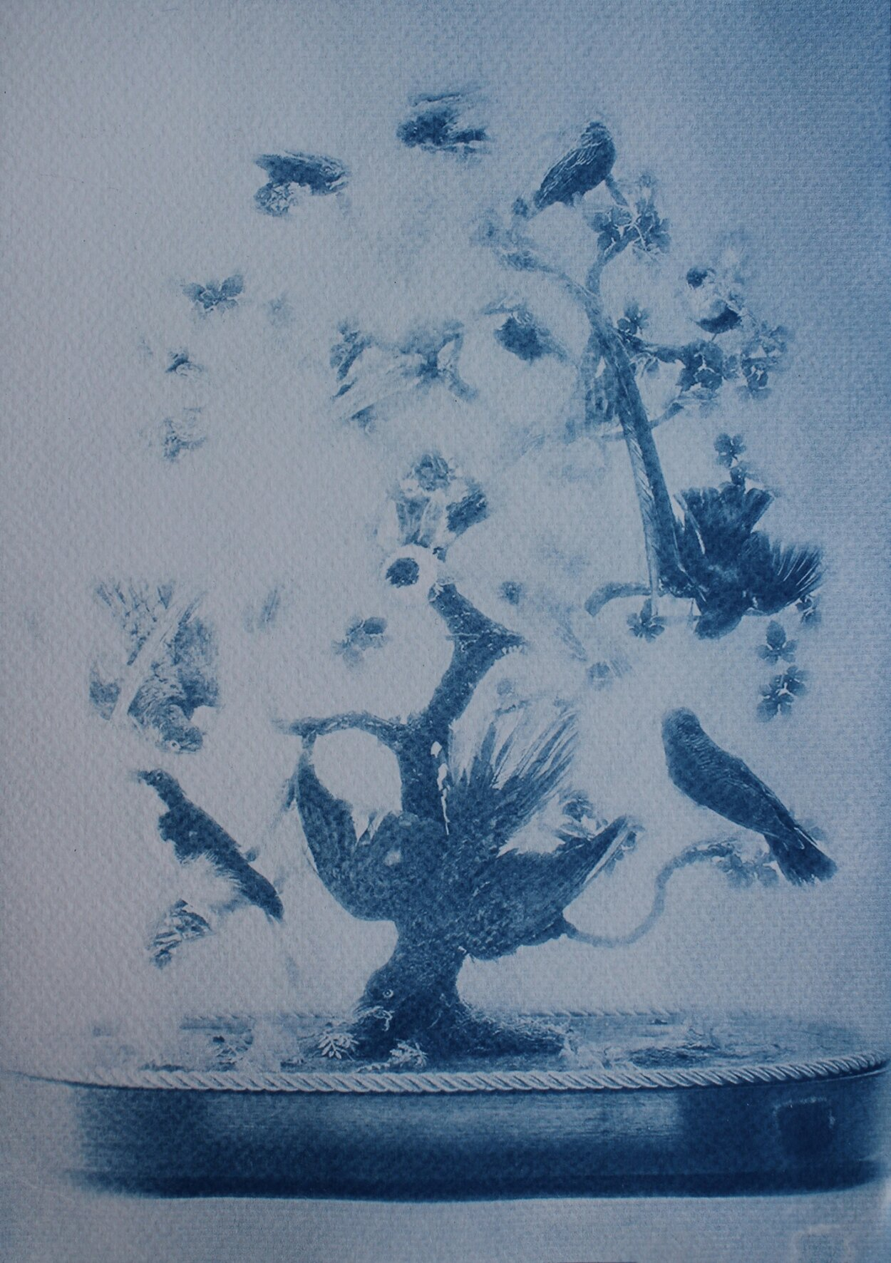 The Hall of Lost Steps ( 3 ), cyanotype, 29 x 20 cm,2020