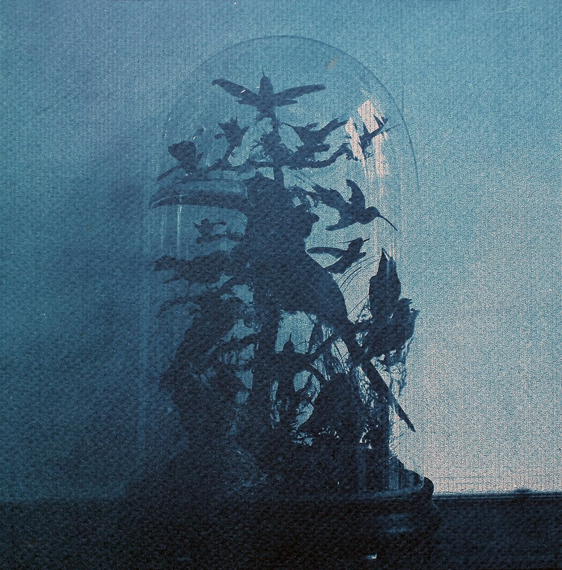 The Hall of Lost Steps ( 5 ), cyanotype, 20 x 20 cm, 2020