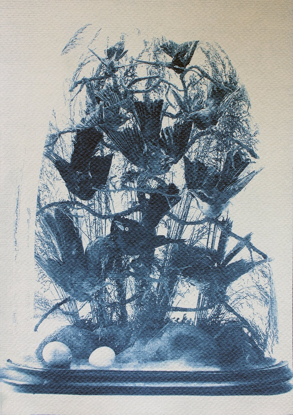 The Hall of Lost Steps ( 6 ), cyanotype, 29 x 20 cm, 2020