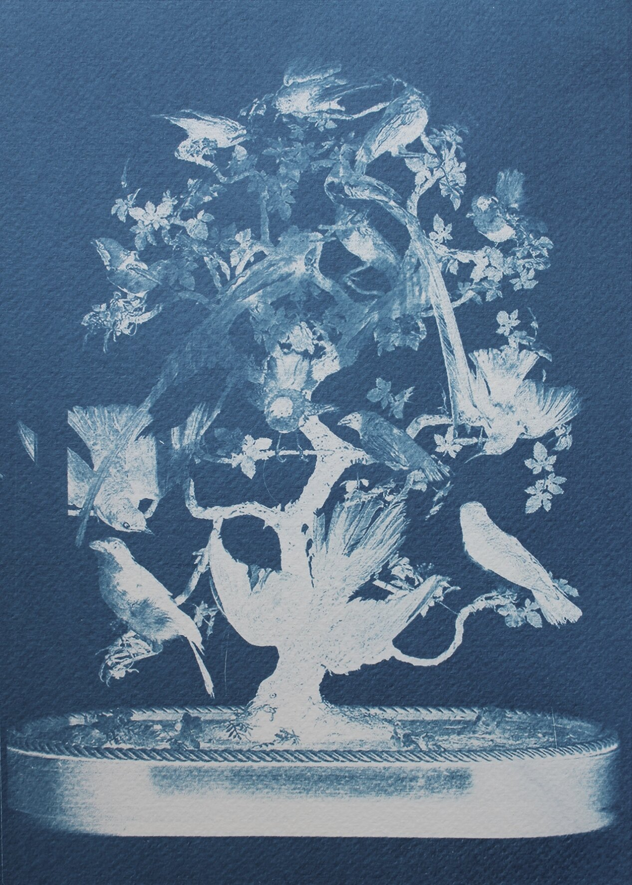 The Hall of Lost Steps ( 9 ), cyanotype, 29 x 21 cm, 2020