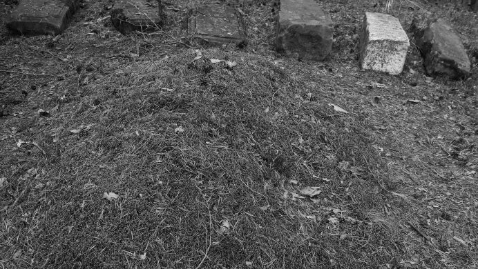 photography, graves of Polish exiles by the Irkut River, 2015