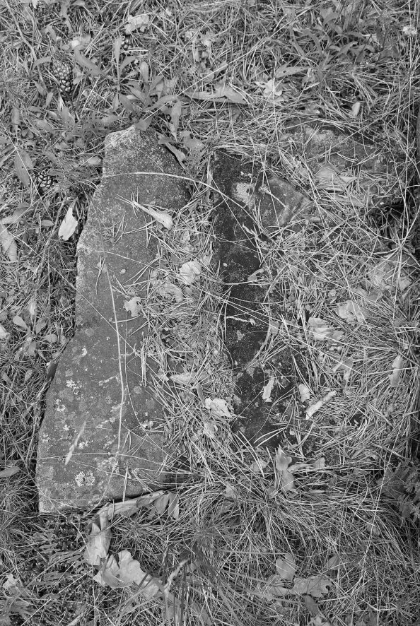 digital photography, graves of Poles by the Irkut River, 2015